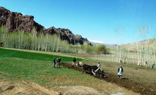 Farmers in Afghanistan's central Bamyan province plough their wheat and potato field. Afghanistan marked the International Mother Earth Day on 22 April 2013 with young Afghans participating in a marathon and children painting their imagination of the earth in the capital, Kabul. Photo: Aurora V. Alambra / UNAMA