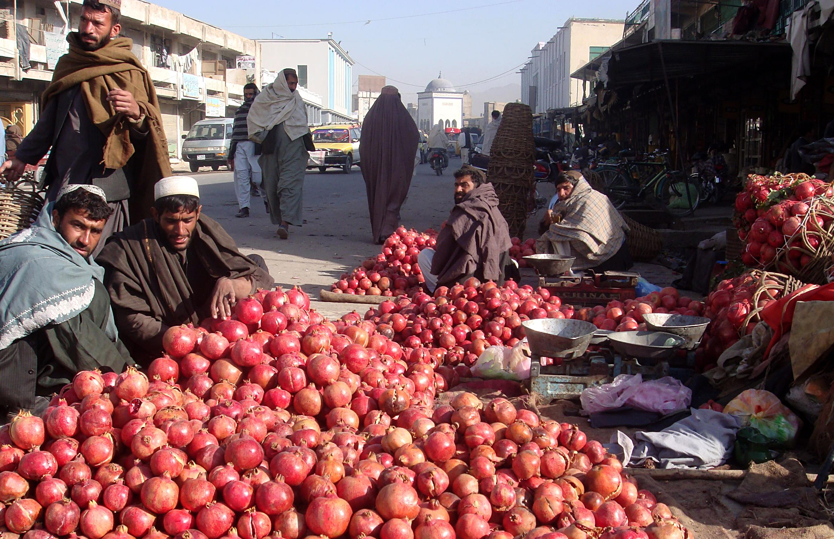 UN provides $58 million grant to improve Afghan food ...