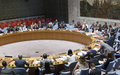 Peace talks with no preconditions a necessity for Afghanistan's future, says UN envoy