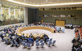 Live and on-demand webcast of Security Council session on latest Afghanistan report