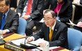 Afghanistan Report of the UN Secretary-General to the Security Council