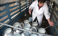 UN SRSG lends support to Afghanistan's dairy farmers