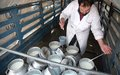 Dairy scheme among success stories in Afghanistan, UN reports
