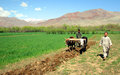 FAO supports poor Afghan farmers