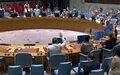 UN Security Council renews UNAMA's mandate