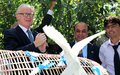 Doves fly high for peace into Afghanistan's clear blue sky