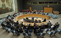 Security Council backs international strategy for Afghanistan