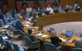 Briefing by Special Representative Deborah Lyons to the Security Council